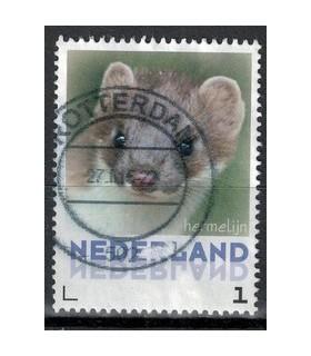 3013 Zoogdieren Egel (o)