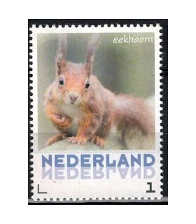 3013 Zoogdieren Eekhoorn (xx)