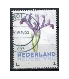 3012 Ac-01 Bloemen voorjaar iris (o)
