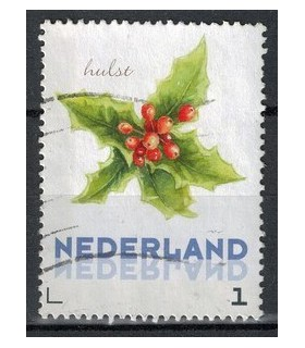 3012 Ac-07 Bloemen winter hulst (o)