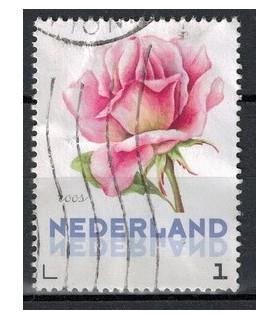 3012 Ac-03 Bloemen zomer roos (o)