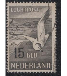 LP12 Zeemeeuw (o) 2.