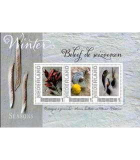 2751 B-6 Beleef de seizoenen winter (xx)