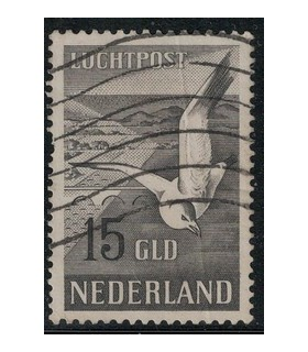 LP12 Zeemeeuw (o)