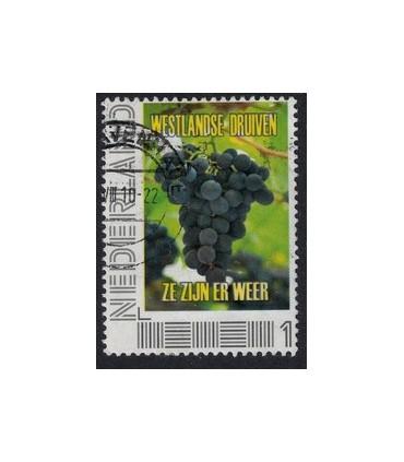 Westlandse druiven (o)