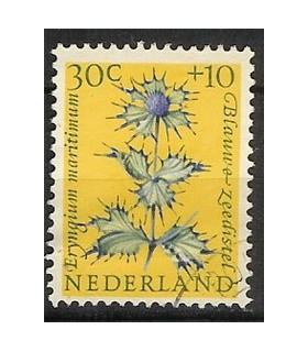 742 Zomerzegel (o)