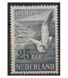 LP13 Zeemeeuw (o) 2.