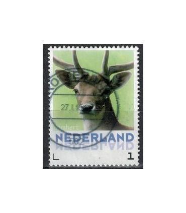 3013 Zoogdieren Boommarter (o)