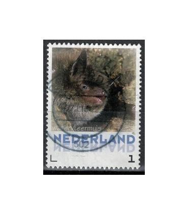 3013 Zoogdieren Steenmarter (o)