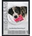 Hondenbescherming (o)