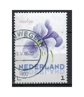 3012 Ac-01 Bloemen zomer viooltje (o)