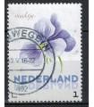 3012 Ac-03 Bloemen zomer viooltje (o)
