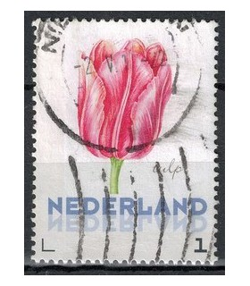 3012 Ac-01 Bloemen voorjaar tulp (o)