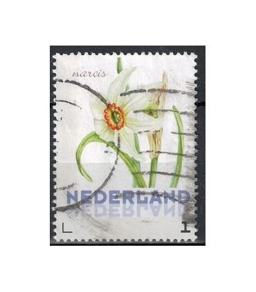 3012 Ac-01 Bloemen voorjaar narcis (o)