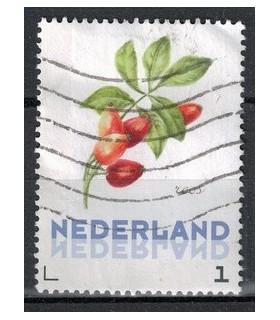 3012 Ac-07 Bloemen winter roos (o)