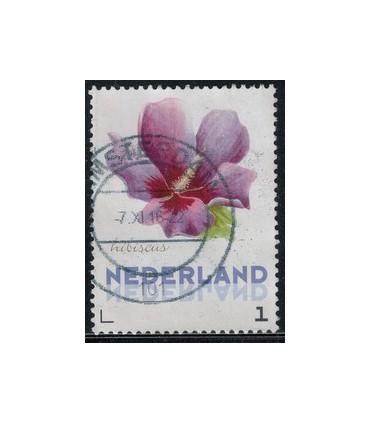 3012 Ac-05 Bloemen najaar hibiscus (o)