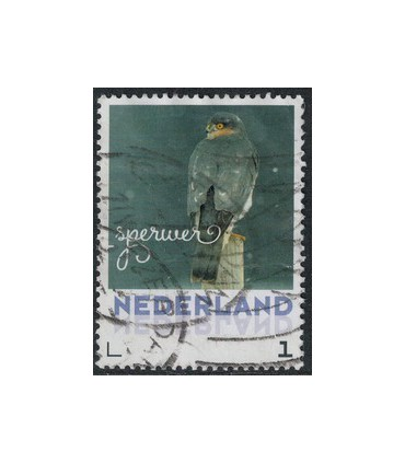 2017 Wintervogels Sperwer (o)