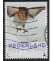 2017 Wintervogels Sneeuwgors (o)