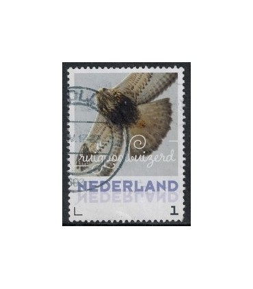 2017 Wintervogels Ruigoordbuizerd (o)