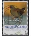 2017 Wintervogels Waterrat (o)