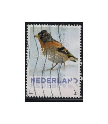 2017 Wintervogels Kees (o)