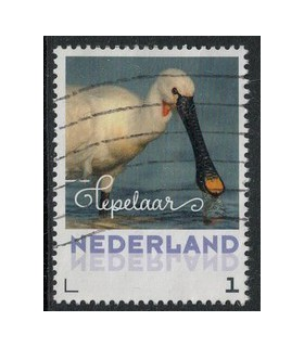 2017 Zomervogels Lepelaar (o)