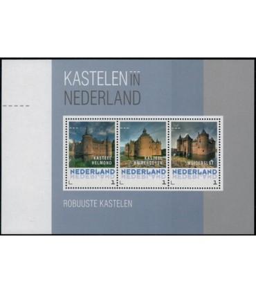 3012 D15 Kastelen in Nederland Robuuste (xx)