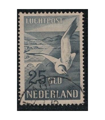 LP13 Zeemeeuw (o)