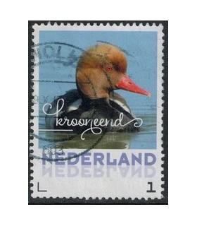 2017 Zomervogels Krooneend (o)