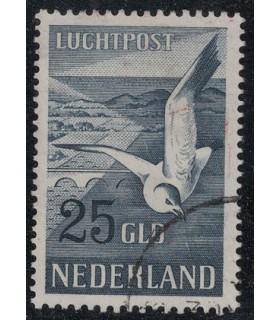 LP13 Zeemeeuw (o) 3.
