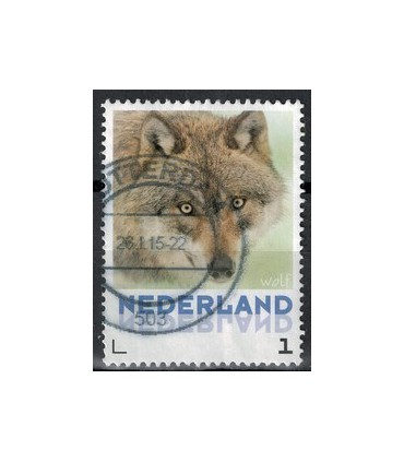 3013 Zoogdieren Bever (o)