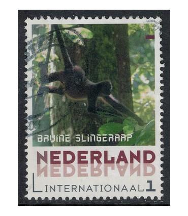 Bruine SlingerAap (o)