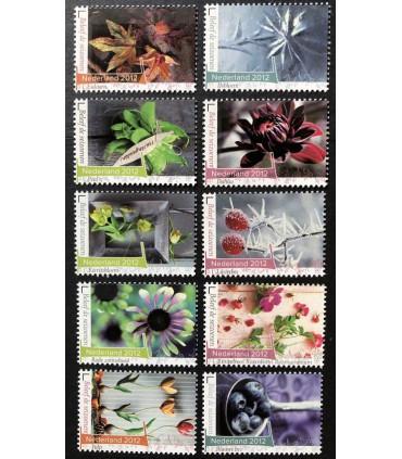 2957 - 2966 Beleef de seizoenen (xx) serie