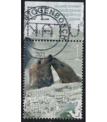3714 Beleef de natuur Zeehond (o) TAB