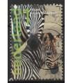 3035 Burgers Zoo zebra (o)
