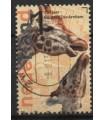3029 Burgers Zoo giraffe (o)