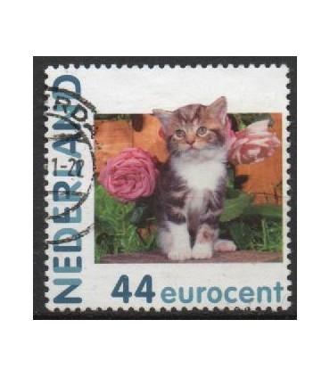 2682 Hb-05 Hallmark kat en rozen (o)