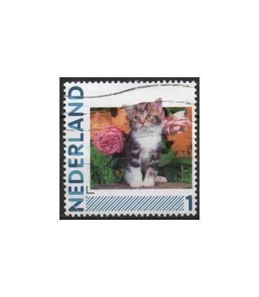2791Ha-05 Kat en rozen (o)