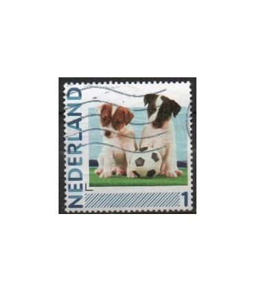 2791Ha-10 Honden en voetbal (o)