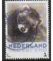 3013 Zoogdieren Bunzing (o)