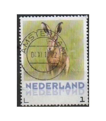 3013 Zoogdieren Haas (o)
