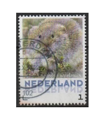 3013 Zoogdieren Noordse woelmuis (o)