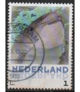 3013 Zoogdieren Bruinvis (o)