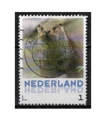 3013 Zoogdieren Otter (o)