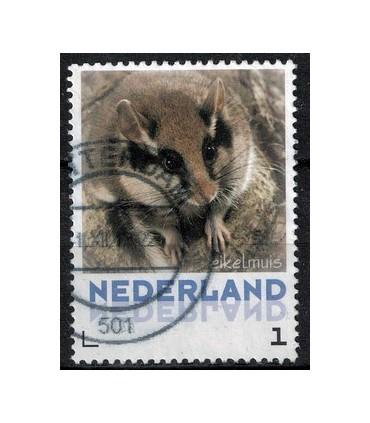 3013 Zoogdieren Eikelmus (o)