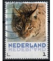 3013 Zoogdieren Lynx (o)