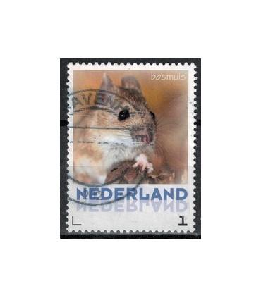3013 Zoogdieren Bosmuis (o)